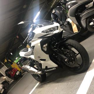 カワサキ - 新型ニンジャ250 2019年 ABS付き