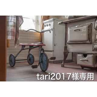 tari2017様専用(その他)