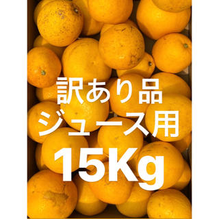 訳あり品 愛媛 宇和ゴールド15Kg   河内晩柑 ジュース用(フルーツ)