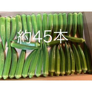 おくら(野菜)