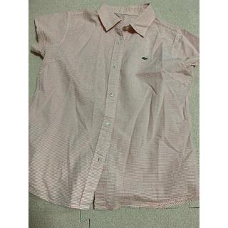 ラコステ(LACOSTE)のラコステ ギンガムチェックシャツ(シャツ/ブラウス(半袖/袖なし))