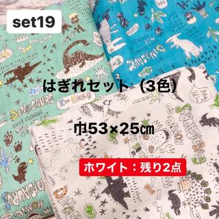ダブルガーゼ 生地 はぎれセット(3色)恐竜 カワグチミヤコ 巾53×25㎝(生地/糸)