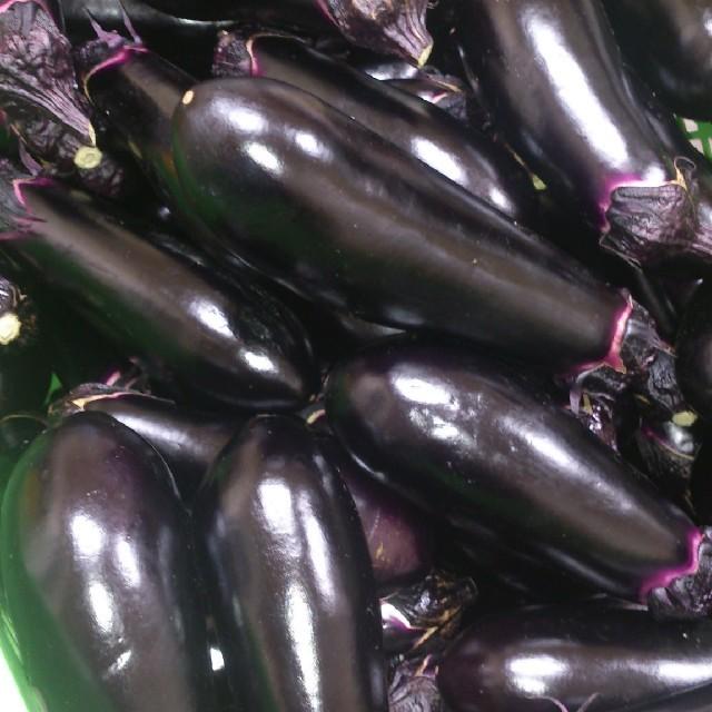 ☆千両なす6㎏☆岡山産 新鮮野菜 食品/飲料/酒の食品(野菜)の商品写真