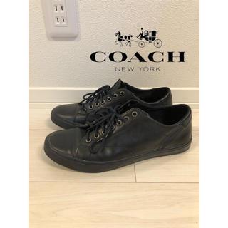 コーチ(COACH)の【即納】COACH コーチ スニーカー 正規店購入 送料無料(スニーカー)
