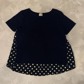 チェスティ(Chesty)のリアラpg  Tシャツ 試着のみ M(Tシャツ(半袖/袖なし))