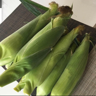 とうもろこし 長野県信濃町産 もろこし ゴールドラッシュ(野菜)