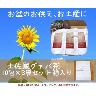 美味しい秘密は自家焙煎♪土佐國グァバ茶10包入×3袋セット(茶)