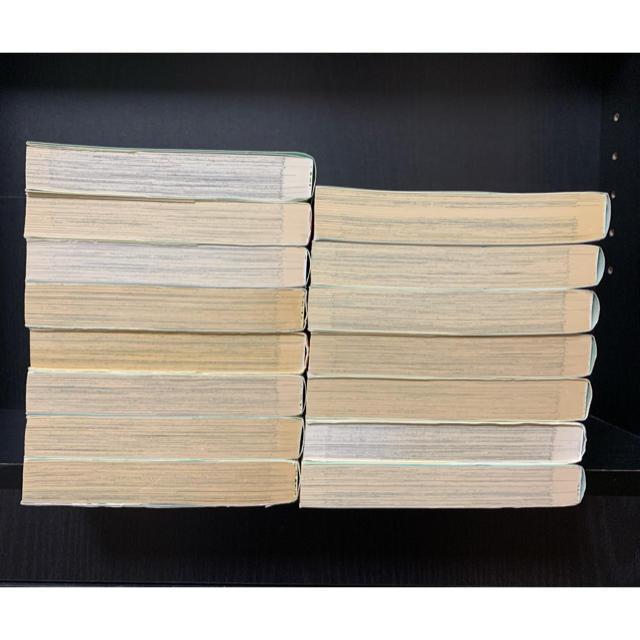 秋田書店(アキタショテン)の光とともに 自閉症児を抱えて 全巻 全15巻セット 戸部けいこ エンタメ/ホビーの漫画(全巻セット)の商品写真