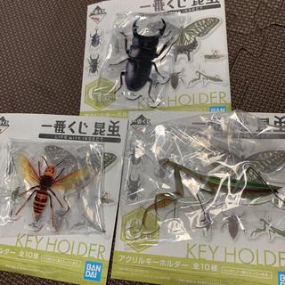 バンダイ(BANDAI)の一番くじ 昆虫 LIFE G賞 アクリルキーホルダー 3個(キーホルダー)