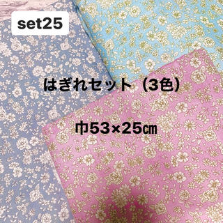 ダブルガーゼ 生地 はぎれセット(2色)ふちどりホワイトフラワー 巾53×25㎝(生地/糸)