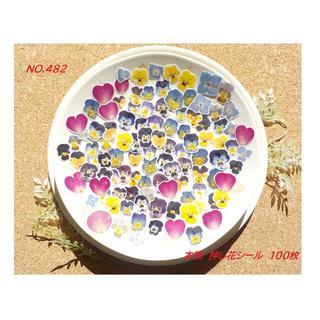 NO.482 お得!本物!押し花 シール ビオラ 薔薇 紫陽花 100枚 (カード/レター/ラッピング)