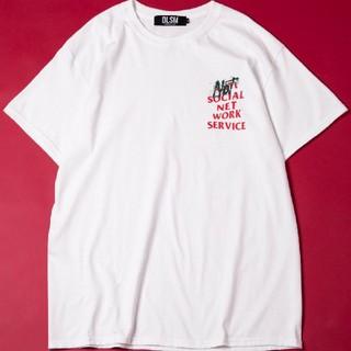 アンチ(ANTI)の美品 DLSM Tシャツ(Tシャツ/カットソー(半袖/袖なし))