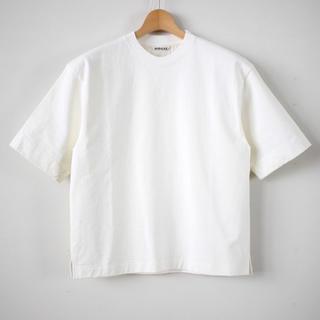 ワンエルディーケーセレクト(1LDK SELECT)のAURALEE STAND-UP TEE(Tシャツ(半袖/袖なし))