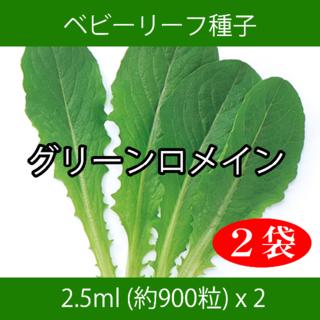 ベビーリーフ種子 B-05 グリーンロメイン 2.5ml 約900粒 x 2袋(野菜)