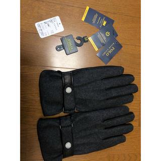 ポロラルフローレン(POLO RALPH LAUREN)のラルフローレン 皮 手袋 メンズ mサイズ 新品未使用(その他)