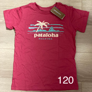 patagonia - タグ付き!ハワイ  パタゴニア半袖Tシャツ 5T