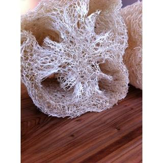オーガニック栽培のヘチマたわし(無漂白)Sサイズ:直径5cm×長さ5cm以内(バスグッズ)