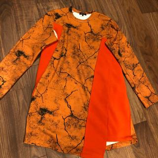 コムデギャルソンオムプリュス(COMME des GARCONS HOMME PLUS)のひー500様専用(Tシャツ/カットソー(七分/長袖))