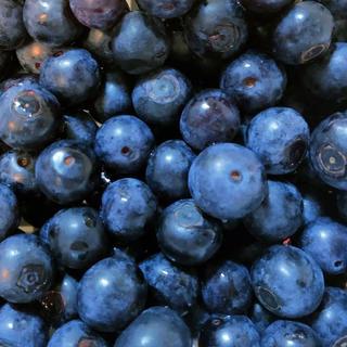 無農薬ブルーベリー無化学肥料400g(フルーツ)