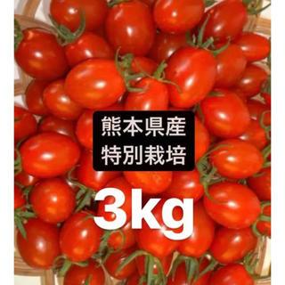 特別栽培アイコミニトマト(野菜)