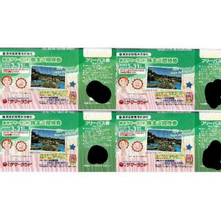 東京サマーランド 株主優待 フリーパス 4枚(遊園地/テーマパーク)