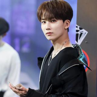 セブンティーン(SEVENTEEN)の取引様専用(K-POP/アジア)
