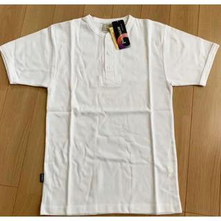 アヴィレックス(AVIREX)の【2枚セット‼︎新品未使用】AVIREX  カットソー 半袖 Tシャツ メンズ(Tシャツ/カットソー(半袖/袖なし))