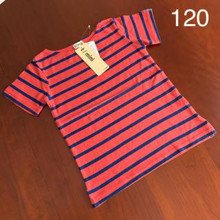ターカーミニ(t/mini)の⭐️未使用品 ターカーミニ t/mini  Tシャツ 120  サイズ(Tシャツ/カットソー)