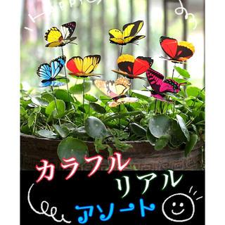 ガーデンピック 3Dカラフル蝶々(その他)