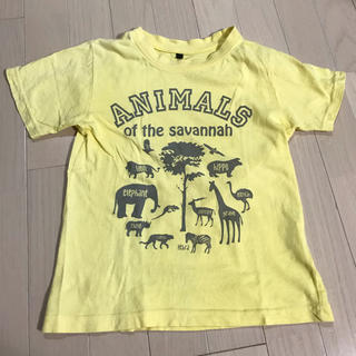 シマムラ(しまむら)のアニマルTシャツ GU UNIQLO(Tシャツ/カットソー)