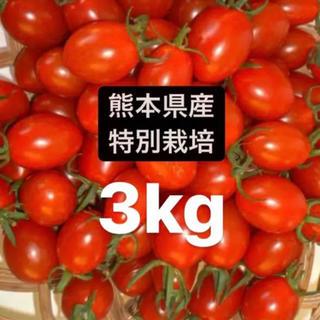 アイコトマト(野菜)