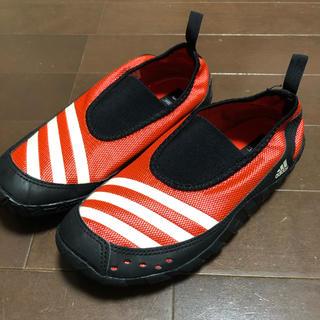 adidas - 美品 マリンシューズ・ウォーターシューズ アディダス adidas