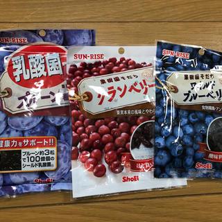 正栄食品 株主優待 ドライフルーツ3種 プルーン・クランベリー・ブルーベリー(フルーツ)