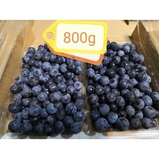 ブルーベリー 800g 無農薬 千葉県産(フルーツ)