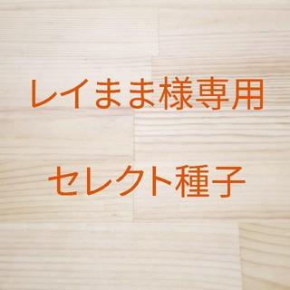 レイまま様専用 B-16 グリーンクリスピー(立性) 1ml x20袋(野菜)
