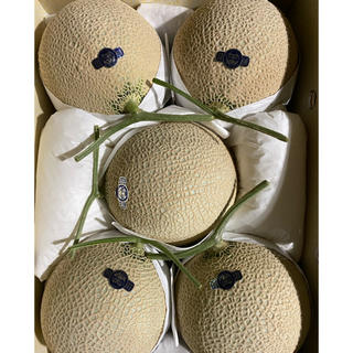 静岡 高級アールスメロン 白5玉 隔離栽培 アローマ(フルーツ)