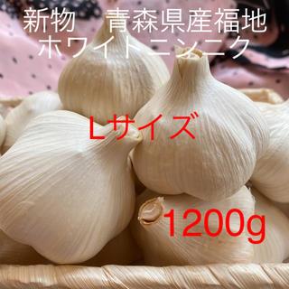 新物 青森県産福地ホワイトニンニク Lサイズ 1200g(野菜)