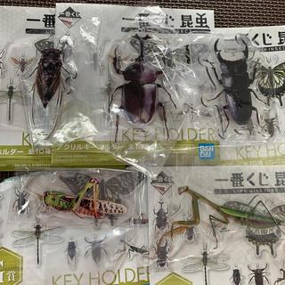 バンダイ(BANDAI)の一番くじ 昆虫 LIFE G賞 アクリルキーホルダー 5個(キーホルダー)