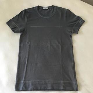 ドルチェアンドガッバーナ(DOLCE&GABBANA)のドルガバ Tシャツ ラッシュガード? (Tシャツ/カットソー(半袖/袖なし))