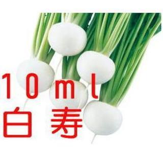 残約30ml:蕪(かぶ)の種「白寿」コート種子 約10ml (約250粒)(野菜)