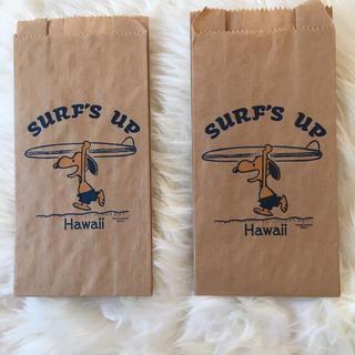 PEANUTS - サーフスヌーピー 紙袋
