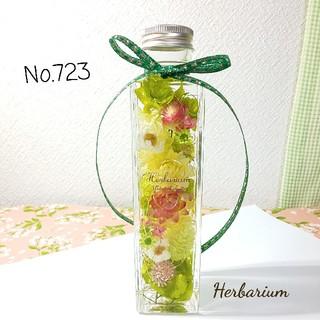 ハーバリウム No.723 グリーンボタニカル(その他)