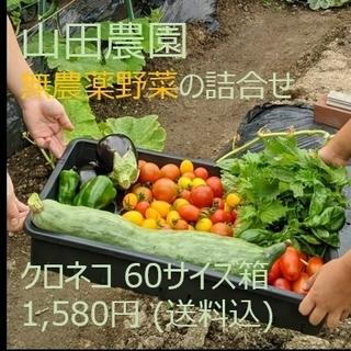 【ご予約…ゆりのしん様】 山田農園の無農薬野菜の詰合せ (60サイズ)(野菜)