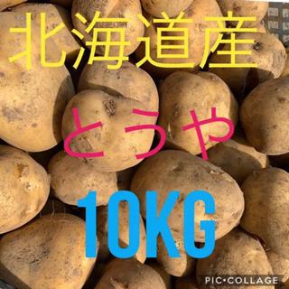 北海道産訳ありじゃがいも とうや10kg(野菜)