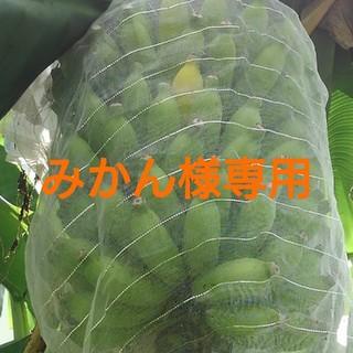 みかん様専用 リピート特価 沖縄の黄輝バナナのふさ 4kg(フルーツ)