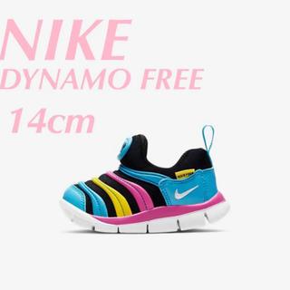 NIKE - 【新品】 NIKE ダイナモフリー 14