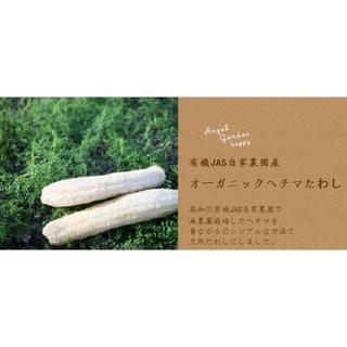 オーガニック栽培のヘチマたわし(無漂白)Mサイズ:直径7cm×長さ10cm以内(バスグッズ)