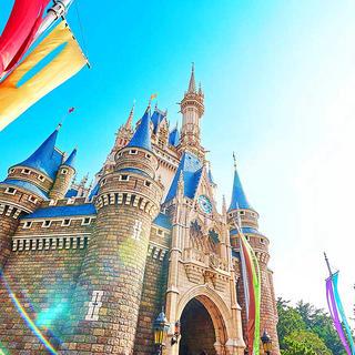 Disney - 東京ディズニーランド関連グッズ
