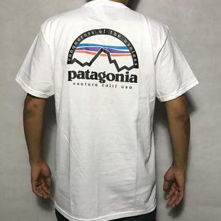 patagonia - パタゴニアTシャツ 白 マウンテン アウトドア クラシック 半袖 夏T