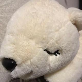 白クマ ぬいぐるみ(ぬいぐるみ)
